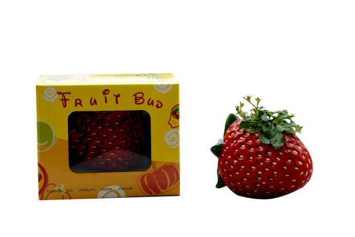 Strawberry gift;Strawberry; Ceramic Strawberry