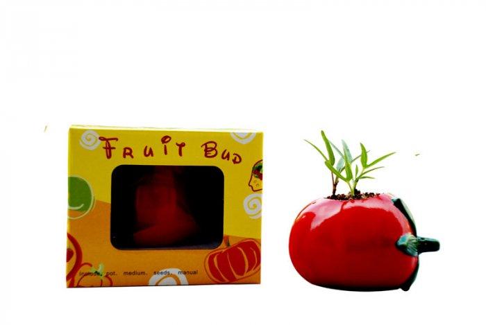 Tomato gift; Ceramic Tomato