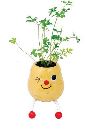 potato planter ;home decoration ;garden craft