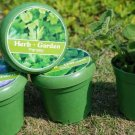 Garden gift;Rice hull plant;environmental Cup flower