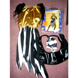 Pirate Costume Pirate Lady Standard Size