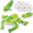 Inflatable Frog Life Cycle