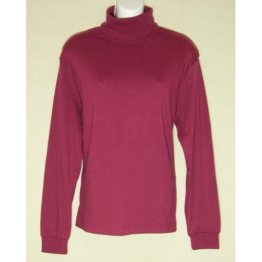 New HASTINGS & SMITH Red Jersey Turtleneck Top- M