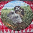 Happy Home  Short Eared Owl's by Jim Beaudoin Collector Plate Knowles
