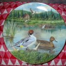 The Pintail by Bart Jerner Collector Plate 1986