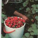 Gourmet Magazine June 1981 The Magazine Of Good Living