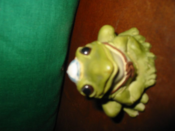 Frog With Books Strapped On Back by Stone Critters  SCB163 How Cute