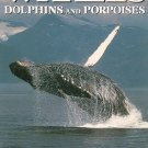 Whales Dolphins And Porpoises 0816019770