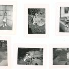 Vintage Photograph Lot Of 6 Assorted Child Baby Bench Stroller  Stuffed Animal Plus B&W