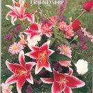 Ideals Friendship 0824912020