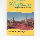100 Desert Wildflowers In Natural Color by Natt N. Dodge Vintage  1971