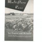 Vintage The Multiflora Rose Brochure by USDA Leaflet No. 374