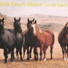 Draft Horse Calendar 1999 Mischka Farm