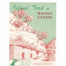 Vintage Island Trail At Walnut Canyon Travel Guide Arizona  1954