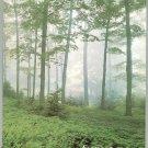 Vintage Audubon Magazine May 1977 Back Issue