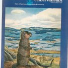 Vintage The Conservationist Magazine February March 1960 Back Issue New York State