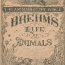 Vintage Brehm's Life Of Animals Part 5 A. N. Marquis Publishers Animals Of The World Not PDF