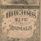 Vintage Brehm's Life Of Animals Part 20 A. N. Marquis Publishers Animals Of The World Not PDF