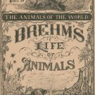 Vintage Brehm's Life Of Animals Part 19 A. N. Marquis Publishers Animals Of The World Not PDF