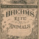 Vintage Brehm's Life Of Animals Part 17 A. N. Marquis Publishers Animals Of The World Not PDF