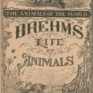 Vintage Brehm's Life Of Animals Part 10 A. N. Marquis Publishers Animals Of The World Not PDF