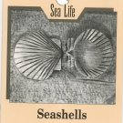 Seashells Carving Sea Life Buyer & Towers 0811724697