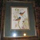 "Birds & Nest Art Print Matted & Framed 10""x12"""