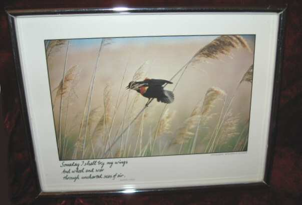 Vintage Photo Benjamin A. Guyger Eileen Lynch Red Wing Blackbird