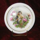 Jason Works Nanrich Pottery Fine Bone China Plate Bird Staffrdshire England