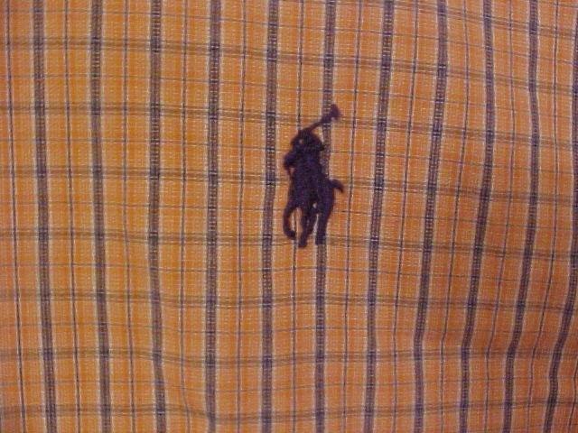 Big Mens  Ralph Lauren Button Down Shirt Short Sleeve Size 4X 4XL 4XB - 915691