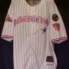 PNLPA Detroit Stars Striped Jersey 8 Negro Baseball 5XL 916011