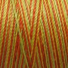 M8 Orange Kiwi Papaya 35wt  500m  Valdani Hand Dyed Variegated Cotton Thread q2