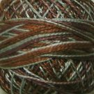 M73 Sage & Bark  Pearl Cotton size 12  Valdani Variegated q2