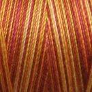 M37 - Autumn - 35wt - 500m - Valdani Variegated Thread  q1