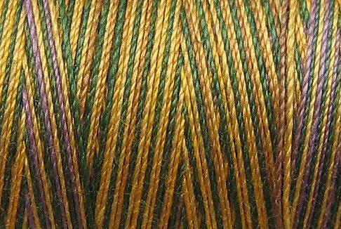 M59  Prairie Sun 35wt 1080 yds Valdani Hand Dyed Variegated Cotton Quilting Thread  q1