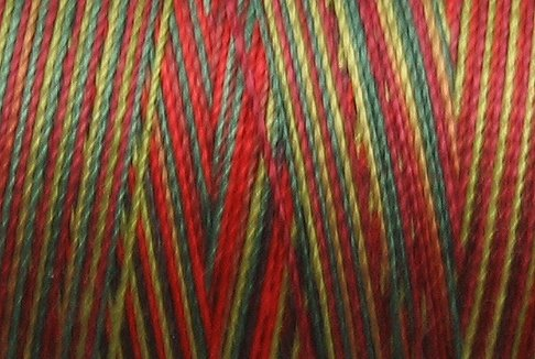 M57  Summer Blooms  35wt 2000m cone Valdani Hand Dyed Variegated Cotton Quilting Thread  q1