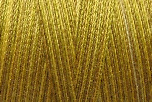 M16 Golden Accents 35wt 2000m cone Valdani Hand Dyed Variegated Cotton Quilting Thread  x0
