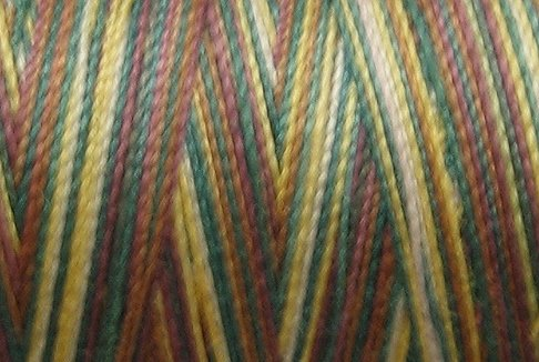 M56  Moose Trail 35wt 2000m cone Valdani Hand Dyed Variegated Cotton Quilting Thread  x1