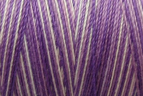 M02 Iris Field 35wt 2000m cone Valdani Hand Dyed Variegated Cotton Quilting Thread  x0
