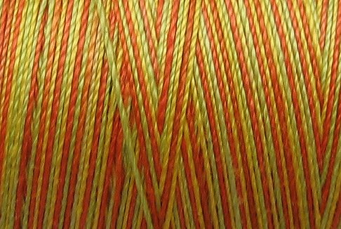 M8 Orange Kiwi Papaya 50wt 1080 yds - Valdani Hand Dyed Cotton Variegated Thread q1