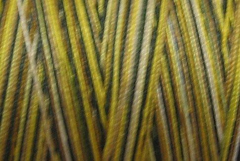 M702 Bumble Bee  50wt 540 yd spool Valdani Variegated Thread q1