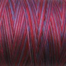 M77 Red Navy Pearl Cotton size 12  Valdani Variegated q1