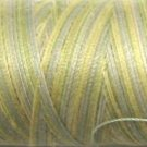 M80 Distant Grass- 35wt -  500m - Valdani Variegated Thread q2
