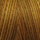 M81 B1 Backyard Honeycomb 35wt  500m  Valdani Variegated Thread q2