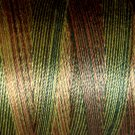 M82 B2 Backyard Greenfield 35wt  500m  Valdani Variegated Thread q1