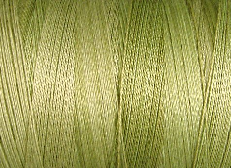 O559 Watery Weed 35wt 500m Valdani Overdyed Thread 0559 q1