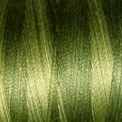 H202 Withered Green from the Heirloom Collection 35wt 500m Valdani Overdyed Thread  q1