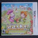Return to PopoloCrois A Story of Seasons Fairytale