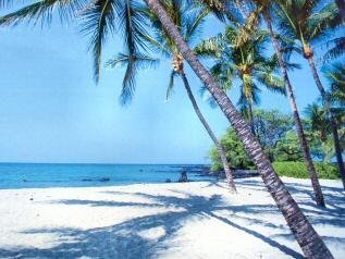 Hawaii, Big Island, Ocean View Estates TERMS $250/Month