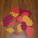 Autumn Leaf  Die Cuts - 40 pcs